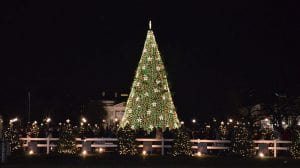 Get Lit in D.C. this Holiday Season – Best Lights and Events